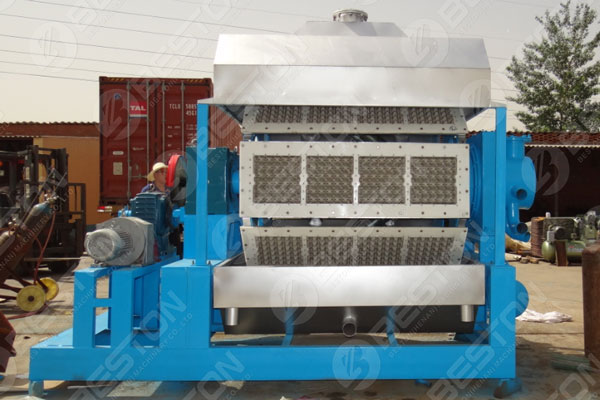 Investing in Egg Tray Machine