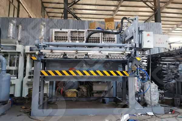 Beston Paper Tray Machine